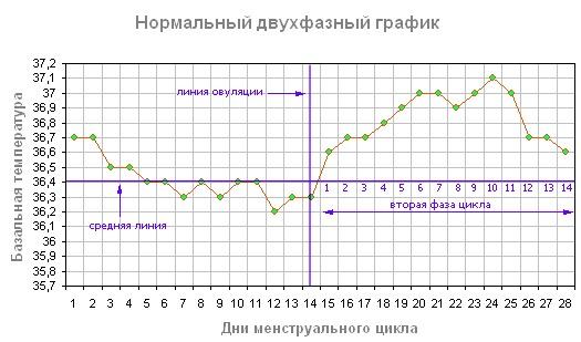Благоприятные дни для зачатия - базальная температура график овуляции