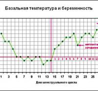 Графики базальной температуры при беременности